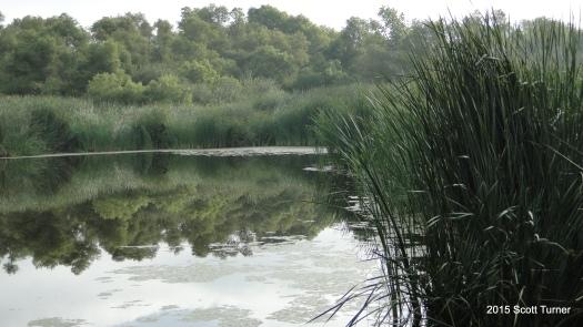 Kumeyaay Lake 2