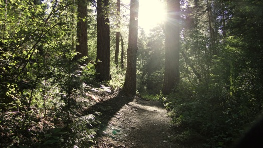 Doane Valley Nature Trail